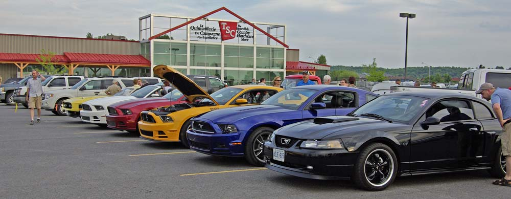 Exposition de voitures Classiques Mustang
